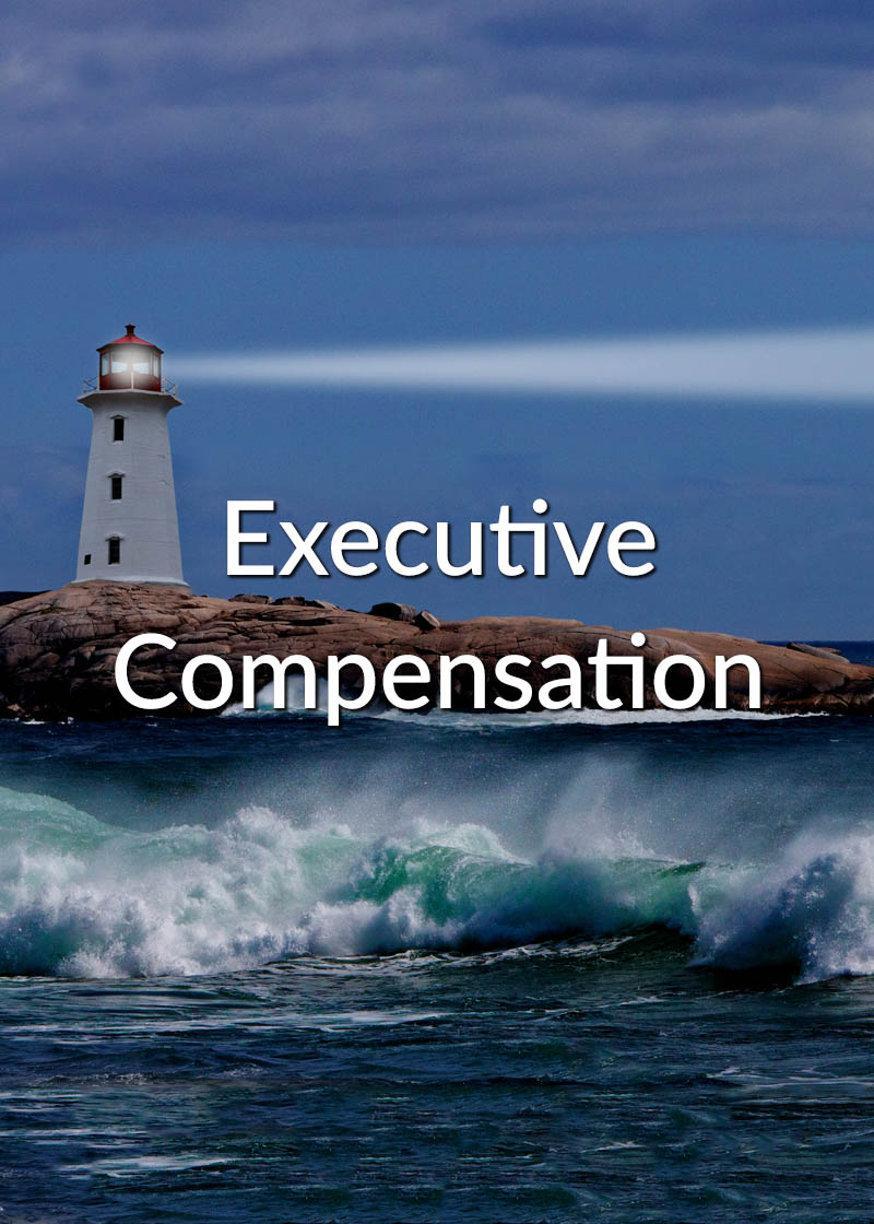 Executive Compensation planning, pay and rewards