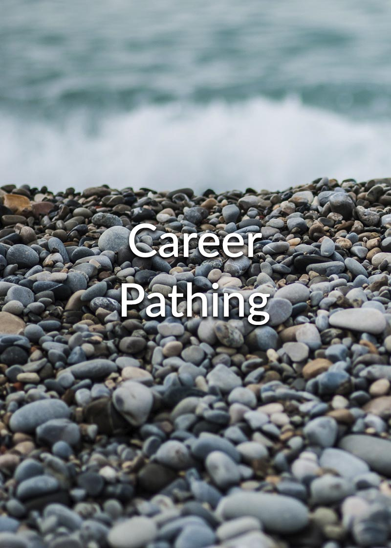 Career development and Career Pathing